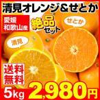 みかん 清見オレンジ & せとか 2種5kg 愛媛・和歌山県産 ご家庭用 きよみ 柑橘 現在出荷中