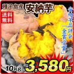 安納芋 種子島産(10kg)訳あり 大特価 極甘蜜芋 中園ファーム あんのう 規格外 徳用 さつまいも 食品 グルメ 国華園