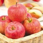 りんご ふじ・サンふじ 山形産 10kg 大特価 特別価格 数量限定 ふじ サンふじ 林檎 果物