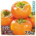 柿 かき 富有柿 和歌山産 ご家庭用 7.5kg 大特価 特別価格 数量限定 果物 食品
