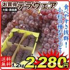 ぶどう デラウェア 約1.2kg お買得 大阪・奈良・山形産 ご家庭用 葡萄 ブドウ
