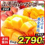 マンゴー 宮崎産 ふぞろい アップルマンゴー(1kg)2〜8玉 ご家庭用 芒果 果物 フルーツ 国華園