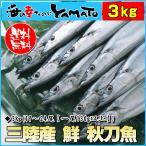 早割900円OFFクーポン 三陸産 鮮 秋刀魚 1尾130g以上保証 総重量3kg(19〜24尾入が目安となります) 生さんま サンマ
