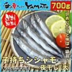訳あり 子持ちシシャモ(大) 一夜干し 850g 約45尾前後入 ししゃも 柳葉魚 干物