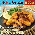 柔らかタコの唐揚げ 500g  個別冷凍 プロ愛用の確かな品質 たこ 蛸 から