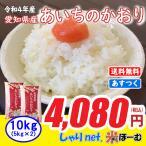 あいちのかおり 5kg×2袋 10kg 白米 お米 米 平成30年産 送料無料 (一部地域除く) 愛知県産