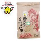 熊本県産 ピロール米 玄米 にこまる(3kg) 上村夢農園 30年度産 1月新商品