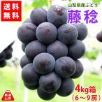 送料無料 山梨県産ぶどう 藤稔(ふじみのり)4kg 超大粒種なし葡萄で見応え食べ応えあり 産地直送