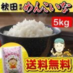 秋田県産 めんこいな 5kg 送料無料 送料込み 米 香りがよく さっぱりとした食感 お取り寄せグルメ