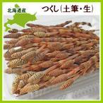つくし(土筆)100g(80本程度) 北海道産 出荷時期:4〜5月