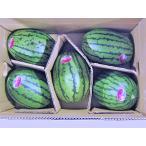 マダーボールすいか(秀・10Kg)2kg×5玉 北海道産 小玉スイカ 出荷時期:7〜8月