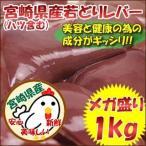 宮崎県産 若鶏レバー(ハツ含む) メガ盛り1kg【レバニラ やきとり 焼肉】