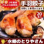 あすつく対応 父の日 プレゼント 餃子 手羽餃子 20本セット ぎょうざ 送料無料 手羽先餃子