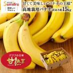 訳あり フィリピン産高地栽培バナナ たっぷり14kg キズ・スレあり お買い得品