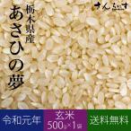 ポイント消化 送料無料 お試し 米 お米 お試しセット あさひの夢 玄米 500g 栃木県産