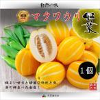 【韓国果物|冷蔵】韓国 マクワウリ ( チャーメ  ・メロン ) 1個