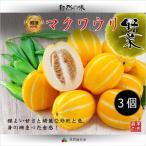 【韓国果物|冷蔵】韓国 マクワウリ ( チャーメ  ・メロン ) 3個