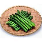 冷凍食品 業務用 グリーンアスパラM ロング  500g    お弁当 緑黄色野菜 便利 あすぱら