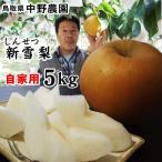 梨 なし 中野農園 新雪梨 5kgセット 自家用 6-18玉入 送料無料 常温 鳥取県産 農家指定商品