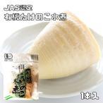 JAS認定 有機たけのこ水煮 1本入 【有機栽培 認定番号:09B-005 筍 竹の子】
