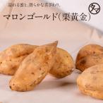 栗黄金 鹿児島産 3kg さつまいも サツマイモ お芋 スイーツ やさい 野菜 九州 送料無料