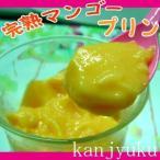 宮崎産完熟マンゴー使用とろける完熟マンゴープリン(100g×6個入り)