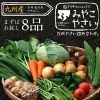 野菜セット 九州産 お試し 7〜8品 宮崎産たまご付き やさい 産地直送 野菜 お取り寄せ 送料無料