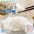 米 お米 10kg 無洗米 (5kg×2袋) はえぬき 山形県産 29年産