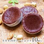 送料無料 スイーツ 1000円 ポッキリ ポイント消化 お試し 個包装 洋菓子 チョコレート ケーキ 訳ありでない カカオ70ガトーショコラ10個入
