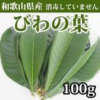 びわの葉 ビワ 枇杷 100g 消毒なし 生葉 和歌山県産