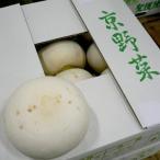 京都産  京野菜  聖護院かぶ  しょうごいんかぶ  Mサイズ 2玉入り 約1100g/1玉  蕪 かぶら 京やさい 伝統野菜 ご当地