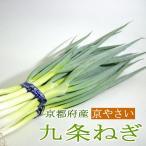 ねぎ 九条ネギ くじょうねぎ  6本前後入り 京都産  京野菜 京都伝統野菜 京やさい 葱 青ネギ 母の日