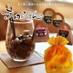 チョコろてん2個セット おもしろチョコ ギフト ヘルシースイーツ チョコレート風味 喜ばれる 和菓子 asu