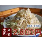 ササニシキ 5kg 玄米 29年 宮城 登米 特別栽培米 米 農薬・化学肥料不使用