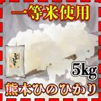 あすつく 精白米 新米 令和元年産 1年産 2019年産 一等米使用 九州 熊本県産 ヒノヒカリ 5kg ひのひかり 白米 くまもとのお米