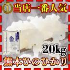 あすつく 当店人気1番 精白米 新米 令和元年産 1年産 2019年産 九州 熊本県産 ヒノヒカリ 20kg 10kg2個 ひのひかり 白米 くまもとのお米