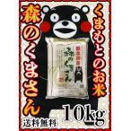 あすつく 一部地域 送料無料 精白米 新米 令和元年産 1年産 2019年産 九州 熊本県産 森のくまさん 10kg 5kg2個 くまモン 他の商品同梱不可 単独発送