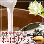 鳥取県北栄町産 砂丘長いも「ねばりっこ」約2kg(2〜3本入) お歳暮 ギフト 送料無料(北海道・沖縄を除く)