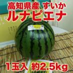高知県産 ブランドスイカ 夜須のルナ・ピエナ 1玉 約2.5kg