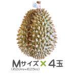 タイ産ドリアン Mサイズ 約2.0kg〜2.5kg 4玉入り(モントーン種)