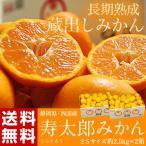 みかん ミカン 静岡県産 寿太郎みかん 超小玉2S 約2.5kg×2箱 送料無料