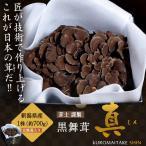 新潟県産 黒舞茸『真』 1株(約700g) 化粧箱 ※冷蔵 ☆