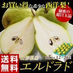 送料無料 洋なし 山形産 西洋梨「エルドラド」約5kg 12〜20玉