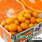 みかん 送料無料 長崎県産みかん 味ロマン 約2.5kg (S〜L) 【糖度12度選別】