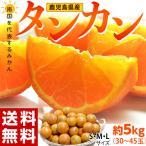 柑橘 みかん たんかん 鹿児島県産 タンカン M〜2Lサイズ 約5kg 送料無料