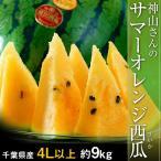 すいか スイカ 千葉県成田産 丸駒出荷組合 神山さんのサマーオレンジ 4L以上 約9kg 送料無料