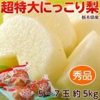 梨 送料無料 栃木県産「にっこり梨」秀品 5〜6玉 約5kg 鮮度保持袋つき