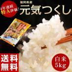 《送料無料》福岡県産米 平成27年度産「元気つくし」 白米5kg ○