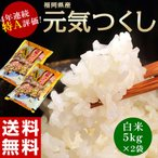 《送料無料》福岡県産米 平成27年度産「元気つくし」 白米10kg(5kg×2袋) ○