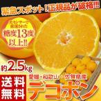 デコポン 柑橘 みかん ミカン 蜜柑 愛媛・佐賀・和歌山県産 「デコポン」 9〜12玉 約2.5kg 送料無料